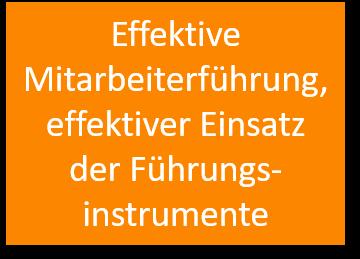 Effektive Mitarbeiterführung, effektiver Einsatz der Führungsinstrumente